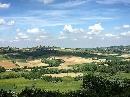 Colline del Monferrato Foto - Capodanno Trattoria Sarroc Monferrato